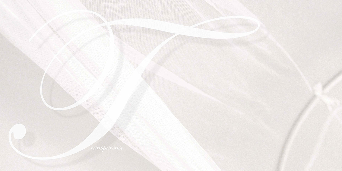 Livre blanc-Dominique Evangelisti-Transparence