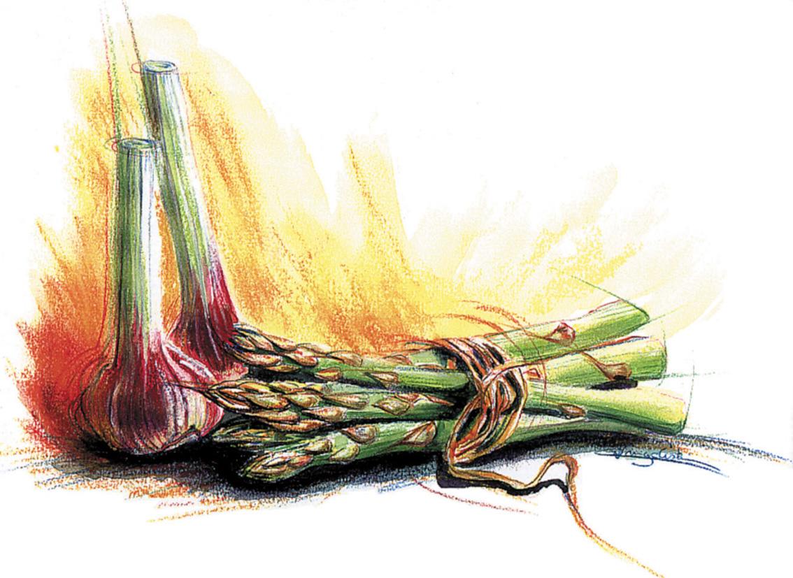 Oignons-asperges