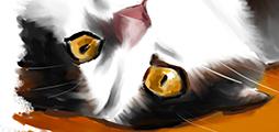 Illustrations-animaux-gros-plan-sur-des-yeux-de-chat
